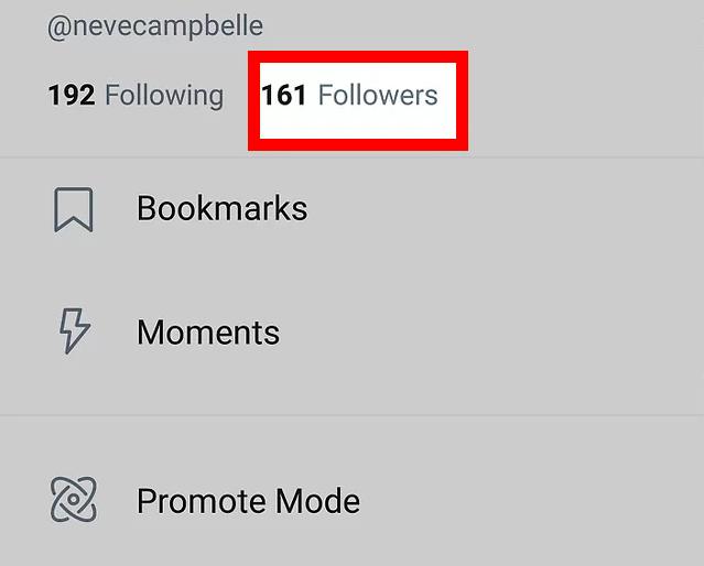 followers list